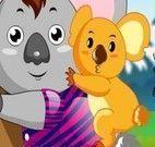 Koala fofinho