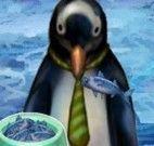 Pinguins de Madagascar descendo na neve