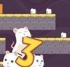 Ratinhos nas plataformas