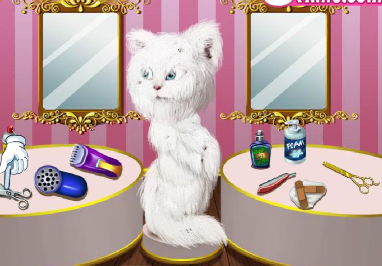 jogo da gatinha